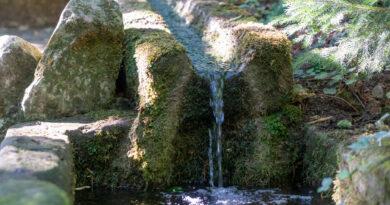 Source Saint Ulrich