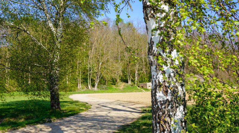 Balade entre Oberhausbergen et Dingsheim ; du Fort Frère au Waldbruder – Bas-Rhin